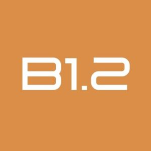 curso b1.2 aleman online